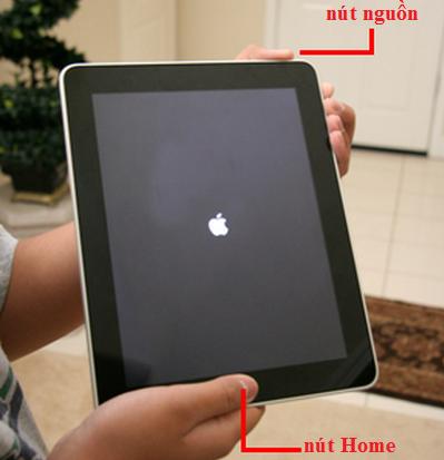iPad không cảm ứng được