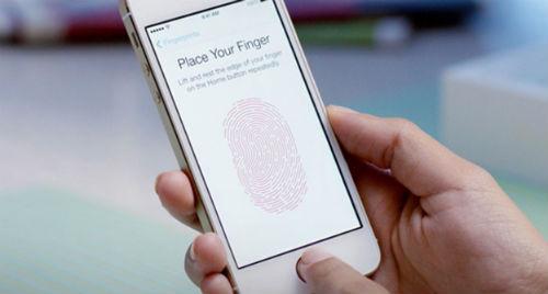 iphone 5s 6 không nhận touch id